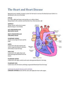 Preview of Biology AS AQA Unit 1 The Heart and Heart Disease