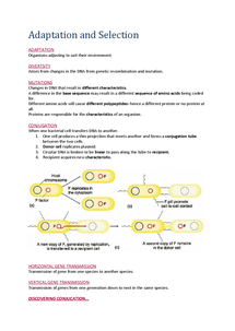 Preview of Biology AS AQA Unit 2 Adaption and Selection