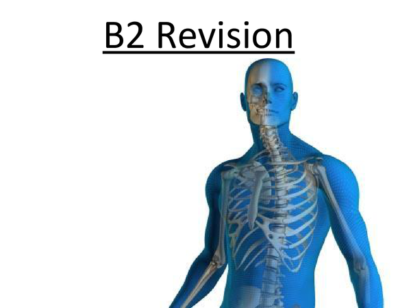Preview of Biology B2 Revision - Edexcel