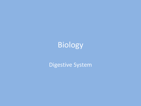 Preview of Biology - Digestion AS
