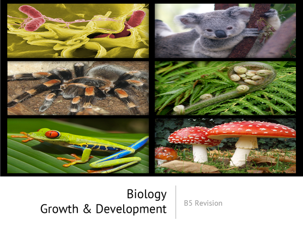 Preview of Biology - Growth and Development