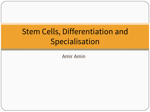 Preview of Biology Poster Stem Cells Differentiation and Specialisation