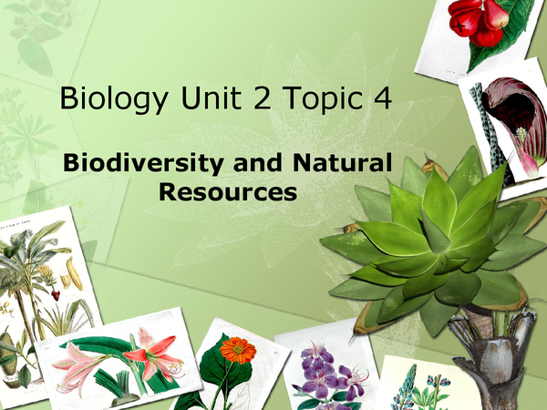 Preview of Biology Unit 2 Topic 4