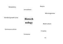 Preview of Biotechnology concept map