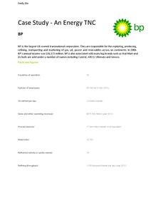 british petroleum bp case study