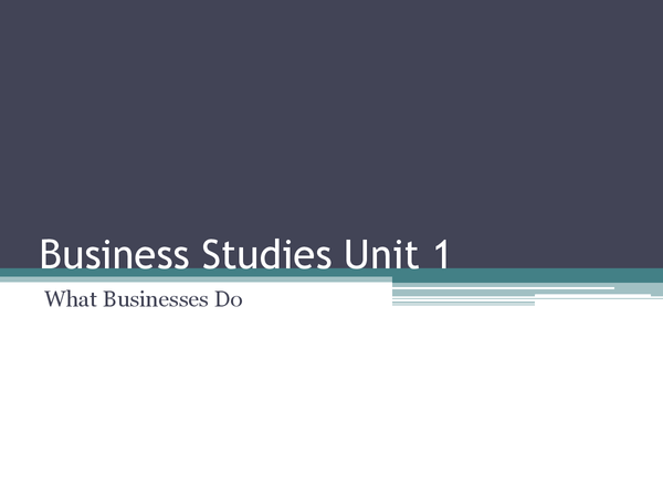 Preview of Business Studies Unit 1 - What businesses do
