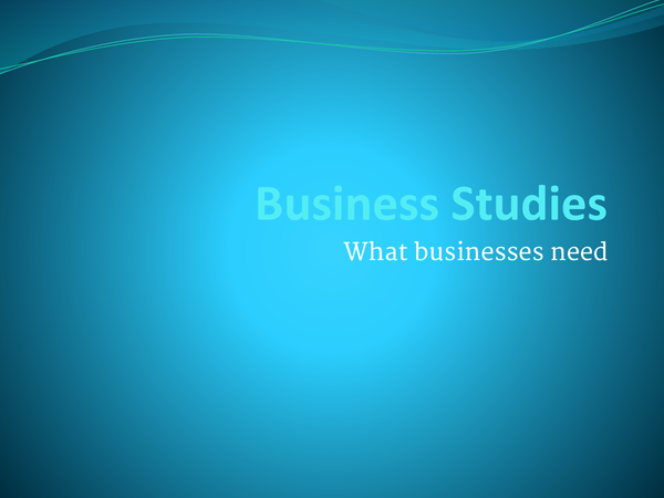 Preview of Business Studies - What businesses need