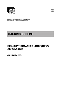 Preview of BY1 January 2009 marking scheme