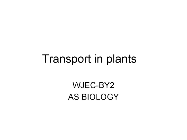 Preview of BY2, (AS BIOLOGY) WJEC TRANSPORT IN PLANTS- POWERPOINT