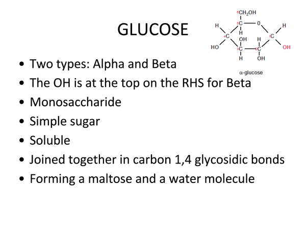 Preview of Carbohydrates (Unit 2 Module 1 OCR)