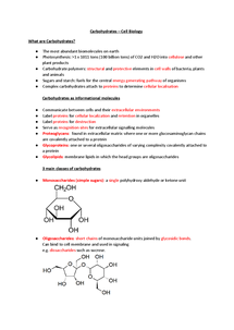 Preview of Cell Biology - Carbohydrates