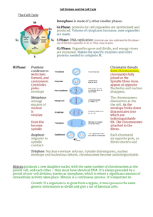 Preview of Cell Division and Cell Cycle