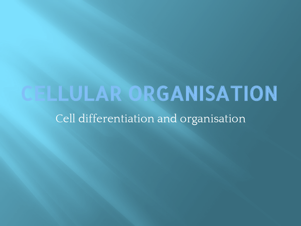 Preview of Cellular differentiation and organisation AQA Unit 2