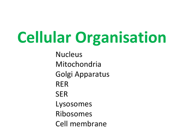 Preview of Cellular Organisation