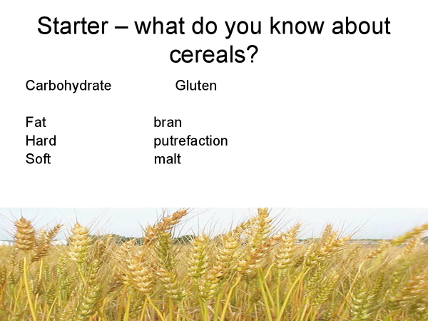 Preview of Cereals