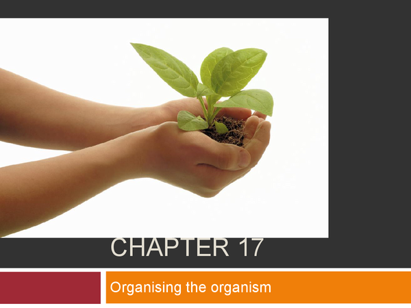 Preview of chapter 17 organising the organism OCR