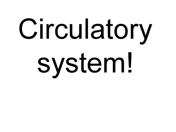 Preview of Circulatory system ppt