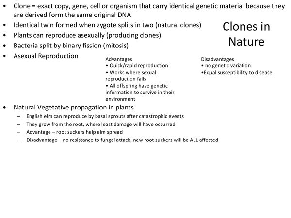 Preview of Clones in nature