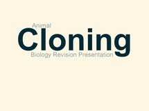 Preview of Cloning of Animals Revision Presentation Slides - WJEC BY5 Use of Genetics