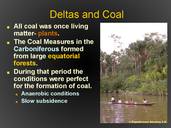 Preview of Coal Revision