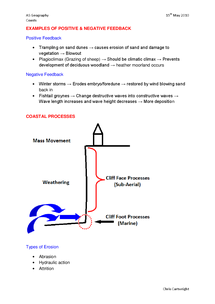 Preview of Coastal Processes Diagram & examples of Positive & Negative Feedback