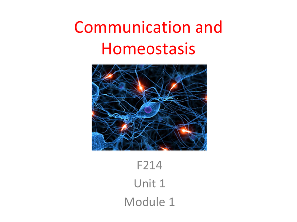Preview of Communication and Homeostasis Unit 1 Module 1 Revision