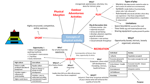 Preview of Concepts of Physical Activity