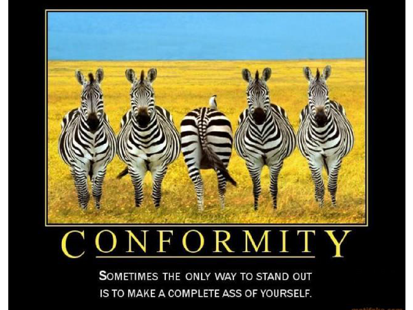 Preview of conformity powerpoint