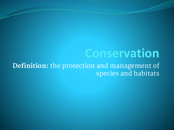 Preview of Conservation