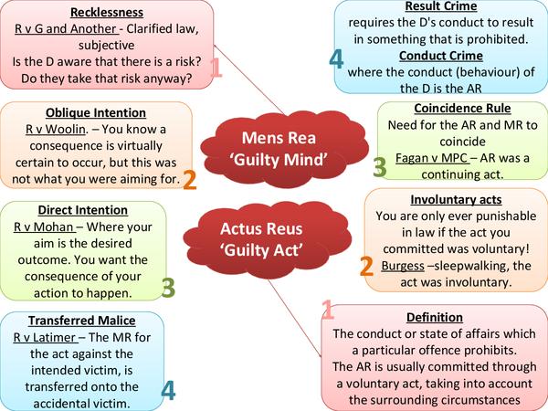 murder criminal law essay