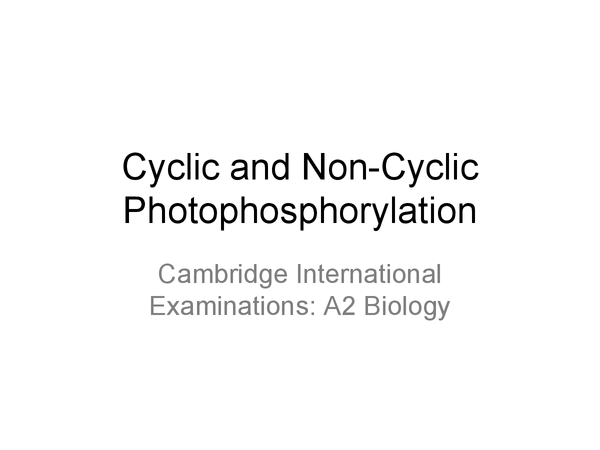 Preview of Cyclic and Non-Cyclic Photophosphorylation and Photosystems