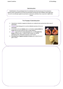 Preview of Deindividuation Revision Booklet