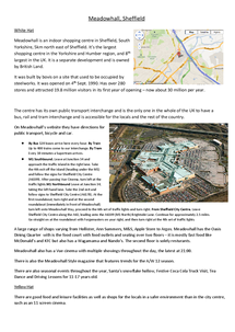 Preview of Detailed case study on Meadowhall