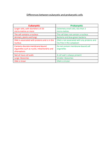 Preview of Differences between eukaryote and prokaryote cells