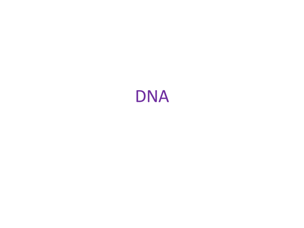 Preview of DNA & RNA