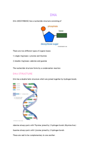 Preview of DNA AQA AS BIOLOGY (BIOL2)