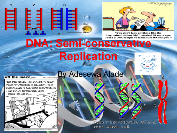 Preview of DNA SEMI-CONSERVATIVE REPLICATION
