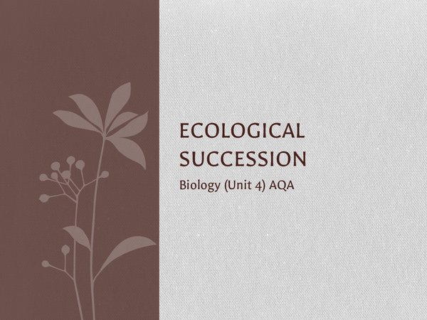 Preview of Ecological Succession