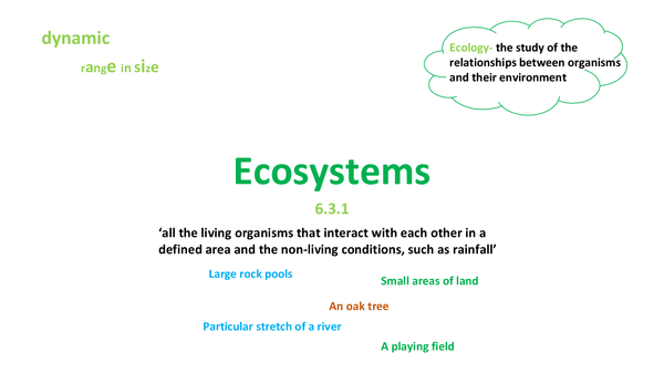Preview of Ecosystems