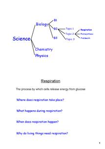 Preview of Edexcel GCSE Biology 2BIO1 - Unit B2 Topic 2
