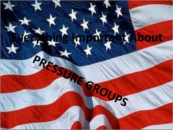 Preview of Edexcel Politics route C - Pressure Groups