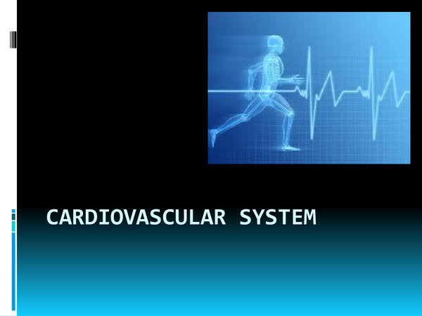 Preview of Effects of Exercise on the Cardiovascular System