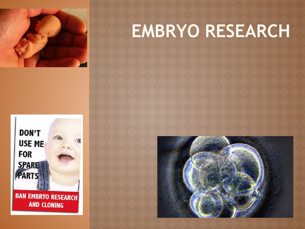 Preview of Embryo Research