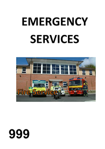 Preview of Emergency Services again
