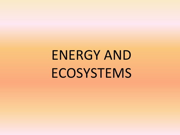 Preview of AQA UNIT 4 ENERGY AND ECOSYSTEMS