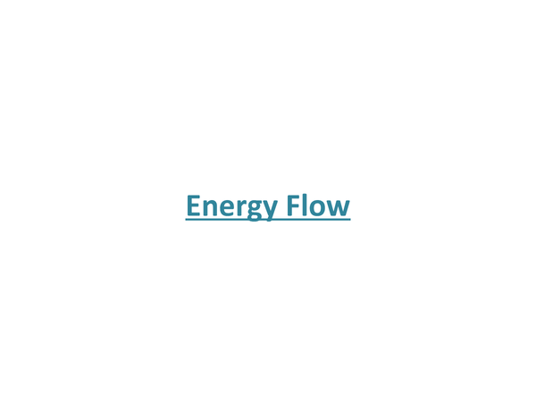 Preview of Energy Flow
