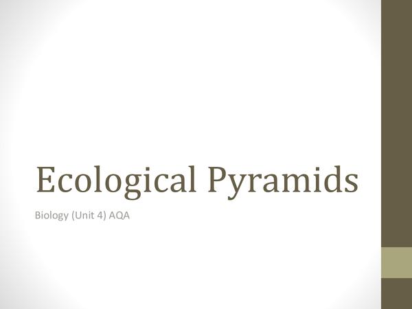 Preview of Energy Pyramids