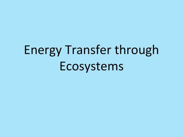 Preview of Energy Transfer in Ecosystems