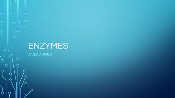 Preview of Enzymes B2