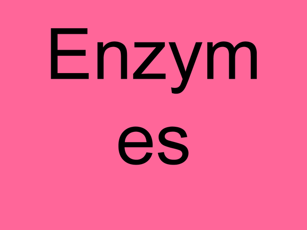 Preview of Enzymes